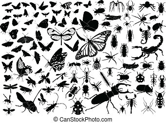 100 vector silhouettes of insects (butterflies, bugs, flies, bees ets.)