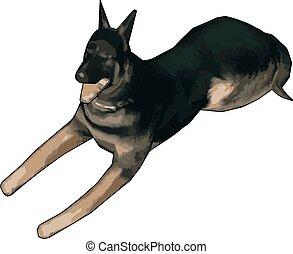 3D model of german shepherd, illustration, vector on white background.