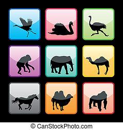 9 Wild Animals Buttons Set