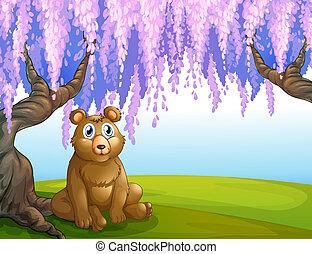 A bear in the park