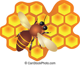 A bee filling the hive cells with fresh honey. vector illustration