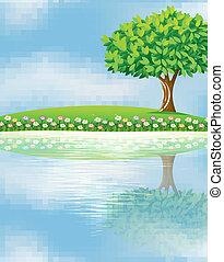 A big tree near the river