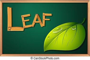 A blackboard with a leaf