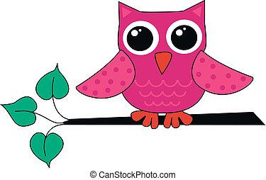 a cute little owl