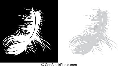 Single white vector feather on black background and on white background.