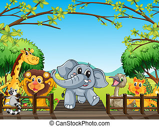 A group of wild animals at the bridge in the forest