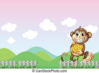 A monkey in the farm