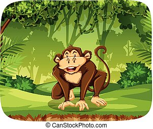 A monkey in the jungle