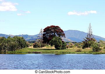A New Zealand Landscape.