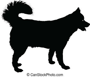 A profile of a Husky dog in black silhouette.