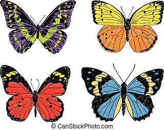A set of decorative butterflies sketches