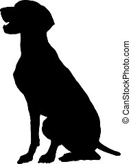 A silhouette, profile view of a sitting German Pointer.