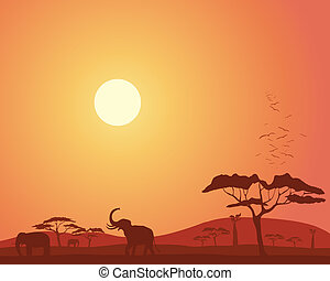 an illustration of a colorful african landscape with acacia trees hills elephants and roosting birds under a bright sunset sky