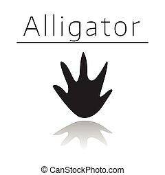 Alligator animal track