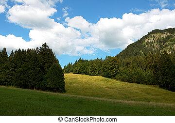 beautiful alpine landscape with bright blue sky
