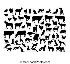 Animal Activity Silhouettes