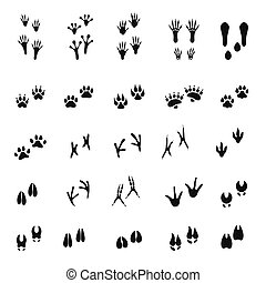 Animal - birds and mammals - footprints silhouettes set isolated on white background