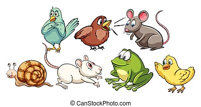 Different kind of small animals