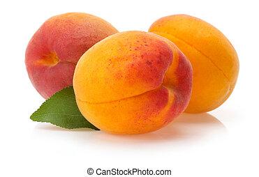 apricot fruit isolated on white background