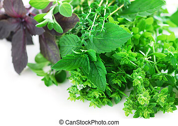 Bunch of fresh assorted herbs on white background