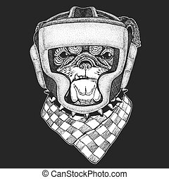 Athletic animal Bulldog, dog. Boxing champion. Print for t-shirt, emblem, logo. Martial arts. Vector illustration with fighter. Sport competition.