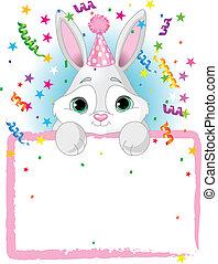 Baby Bunny Birthday