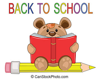 Back to school, bear