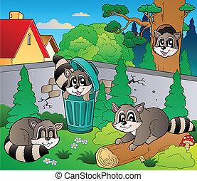 Backyard with cute raccoons