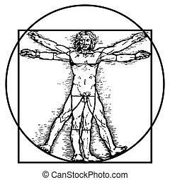 Leonardo da Vinci's vitruvian man in vector.