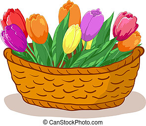 Vector, wattled basket with flowers tulips and green leaves