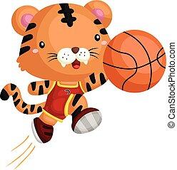 basketball tiger