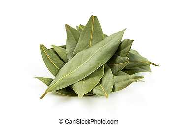 heap bay leaves isolated on white background