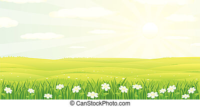 Beauty Summer or Spring Landscape, vector illustration