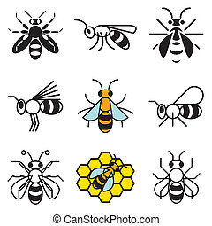 bee and honey icons set