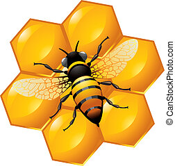Bee on a part of honeycomb, isolated on white. Also can be used as an icon.
