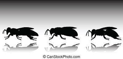 bee three black vector silhouettes