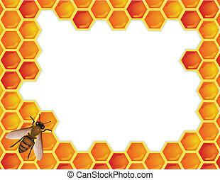 Bee with honeycomb