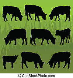 Beef cattle detailed silhouettes illustration background vector