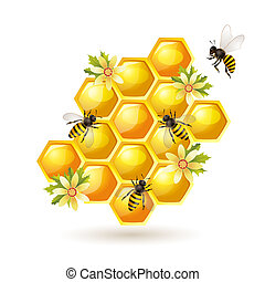 Bees and honeycomb on white