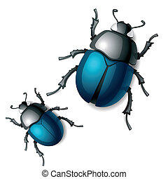 Vector illustration of a beetle