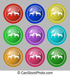 Betting on dog fighting icon sign. symbol on nine round colourful buttons. Vector