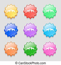 Betting on dog fighting icon sign. symbol on nine wavy colourful buttons. Vector