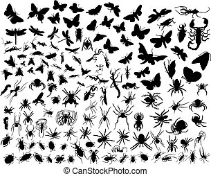 Big collection of different vector insects silhouettes