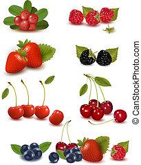 Big group of fresh berries Vector illustration