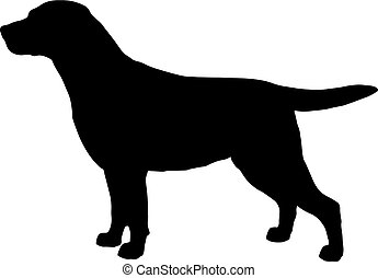 Black and white silhouette of dog labrador. Illustration of a pet