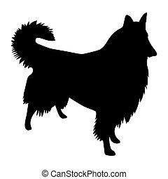 black vector silhouette of Shetland Sheepdog