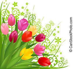 Bouquet From Spring Tulips, Isolated On White Background, Vector Illustration