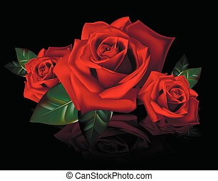 bouquet of red roses with reflectio
