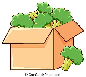 Box of broccoli on white background