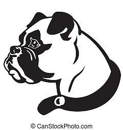 boxer dog head